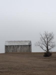 Gray Barn IMG_1684
